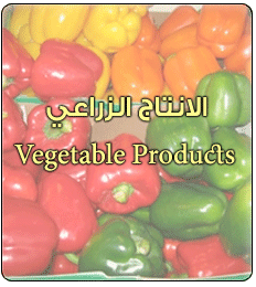 vegetable-products-thumb